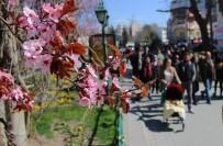 OSMANGAZİ ÜNİVERSİTESİ - Eskişehir'de Kartpostallık Bahar Görüntüleri