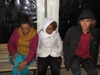 Kürek Çekerek Midilli'ye Gitmek İsteyen 15 Mülteci Yakalandı