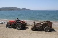 CARETTA CARETTA - Çalış Plajı Kumsalı Traktörle Temizleniyor