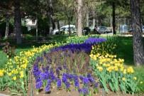 Gediz Yaşam Parkında Renk Cümbüşü