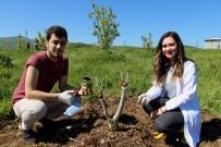 TAFLAN - OMÜ'lü Öğrencilere Bahçede Eğitim