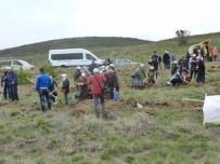 BIRLEŞMIŞ MILLETLER - Otizm Farkındalık Ormanı'na 1000 Adet Fidan Dikildi