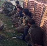 PKK'ya Büyük Darbe Açıklaması İşte Böyle Yakalandılar!