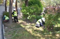 Soma'da Park Ve Bahçelere Kadın Eli Değdi