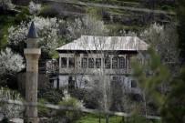 Süleymaniye'de Eşsiz Bahar Güzelliği