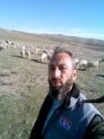 HAYVAN - Çobanlar Bursa'da Buluşuyor