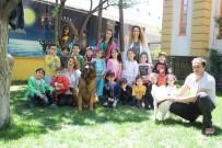 HAYVAN - GKV'li Minikler Okullarında Evcil Hayvanları Ağırladı
