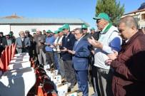 KAYSERİ ŞEKER FABRİKASI - Şarkışla Gümüştepe Köyünde 'Pancar Ekim Töreni' Yapıldı