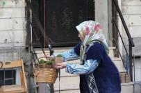 Zeytinburnu'nda Sokakları Fesleğen Kokusu Sardı