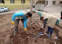 SU TESİSATI - Haliliye'deki Parklarda Mevsimsel Çalışmalar Devam Ediyor