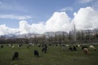 MUNZUR ÇAYı - Ovacık'ta Bahar Ve Kış Bir Arada