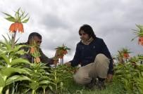 KARACADAĞ - Pazar Sıkıntısı Yaşayan Ters Lale Üreticileri Destek Bekliyor