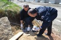Polis, Yaralı Köpeğe Sahip Çıktı