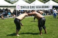 RECEP KARA - Bursa'da Düzenlenen Yağlı Güreşler Nefes Kesti