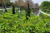 PORSUK - Havalar Isında Parklara Akın Başladı