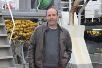 GıRGıR - - Sezonun Son 10 Gününde Balıkçılar İstavritten Umutlu
