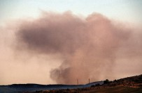KARADERE - Tosya'da 4 Hektar Ormanlık Alan Yandı
