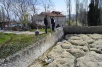 SARMAŞıK - Mezarlık Sulama Havuzunda Genel Temizlik