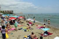 KADİR ALBAYRAK - Tekirdağ Plajlarına Mavi Bayrak Çalışması