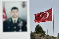TARIM ARAZİSİ - Gümüşhane'de Şehit Ömer Halisdemir Adına Hatıra Ormanı Oluşturuldu