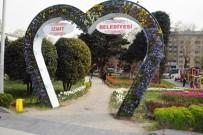 LALE SOĞANI - İzmit Belediyesi'nin Diktiği Laleler Açmaya Başladı