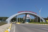 AMELİYATHANE - OMÜ'ye Yabani Hayvan Rehabilitasyon Merkezi Yapılacak