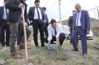 15 Temmuz Şehitleri Hatıra Ormanına Gidan Dikildi