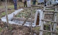 ÇAM KESE - Çanakkale'de Çam Kese Böceği Mücadelesi Sürüyor
