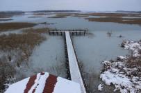 PİKNİK ALANLARI - Efteni Gölü Abant'a Rakip Olacak