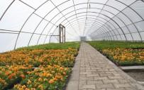 Erzincan Belediyesi Şehri Çiçeklerle Donatıyor