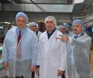 MODIFIYE - Eskişehir'de Milli Seferberlik Programı