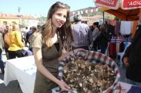 HEDİYELİK EŞYA - Fethiye'de Kuzugöbeği Mantarı Festivali Başladı