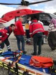 HEKİMHAN - Malatya'da Yıldırımın Çarptığı Çoban Yaralandı