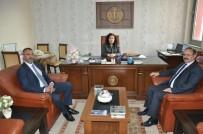 DOĞAN HABER AJANSı - Milletvekili Deligöz Çalmadık Kapı Bırakmadı