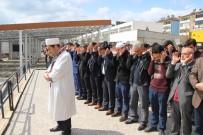 HAMANEY - Suriye'de Hayatını Kaybedenler İçin Gıyabi Cenaze Namazı Kılındı