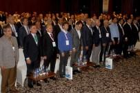 TÜRKİYE YÜZME FEDERASYONU - Türkiye Yüzme Federasyonu'nun Yeni Başkanı Erkan Yalçın Oldu