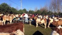 GÜBRE - Gıda, Tarım Ve Hayvancılık İçin 8 Milyonluk Proje