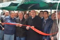 Sinop'ta Roman Müzisyenler Derneği Açıldı