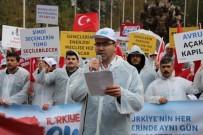 TÜGVA'dan Amasya'da 'Evet Yürüyüşü'