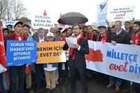 TÜGVA Niğde Temsilciliği'nden 'Türkiye İçin Evet' Yürüyüşü