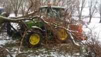 Yarım Asırlık Dut Ağacı Traktörün Üzerine Devrildi
