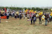 ŞANLIURFA MİLLETVEKİLİ - Şanlıurfa'da 1 Mayıs Çeşitli Etkinliklerle Kutlandı