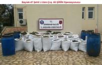DİYARBAKIR VALİLİĞİ - Diyarbakır'da Zehir Bataklığı Kurutuluyor