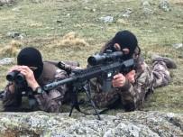 TABUR KOMUTANLIĞI - JÖH Ve PÖH Timleri Karadeniz'de Teröristlere Göz Açtırmıyor
