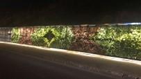 FAZLA MESAİ - Mardin'deki 'Dikey Bahçe' Işıklandırıldı