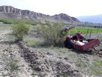 Tosya'da Traktör Kazası Açıklaması 3 Yaralı