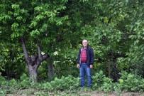 ORGANIK TARıM - Üniversiteden Organik Tarım Çağrısı
