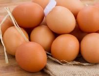 KUŞ GRIBI - Yumurta ihracatı yüzde 59 arttı