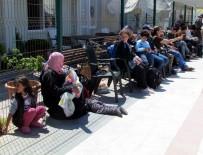 KAMERUN - Çeşme'de 51 Sığınmacı Yakalandı