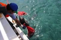 TURGUTREIS - Gölköy'de Deniz Dibi Temizliği